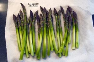 asparagus-preped